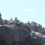 Photo of Marietas Islands