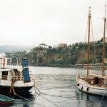boats in Sorrento harbour © Robert Bovington