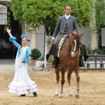 Royal Andalucian horse show - 2