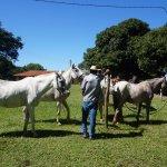 Photo of Fazenda Baia Grande