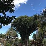 Photo of Jardines de la Marquesa