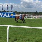 Photo of Sandown Park Racecourse