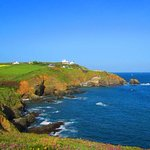 Lizard Point is well worth a visit with many good walks nearby.