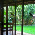 Photo de Tacacori EcoLodge