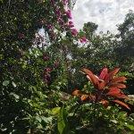 Photo de Jardim de Trancoso Pousada