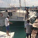 Photo of Samba Catamarans