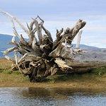 Canal Fun & Nature Foto