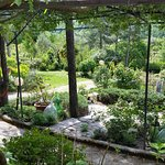 Flower garden surrounding Villa