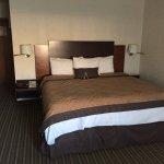 Photo de Casa Grande Chihuahua Business Plus Hotel