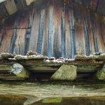 Detail cabin