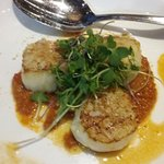 Vieiras con Romesco Seared Maine scallops over romesco sauce