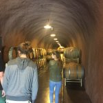 the corridor is lined with barrels