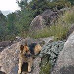 Kyra joined us for the trek!