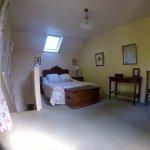Cottage rose de Provins