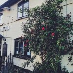 Welcome Home ! - to the Red Lion Madley