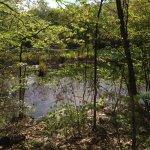 Weir Farm National Historic Site Photo