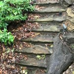 Unsafe stairs with accumulated leaves and debris