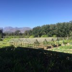 Boschendal Manor & Winery Foto