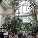 The interior of the Palm House ( Palmenhaus )