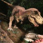Gondwana T-Rex