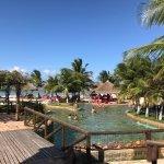 Manoa Park