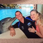 Kiss with the dolphin