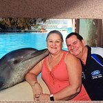 Kiss with the dolphin pay for the photo $45 for the set