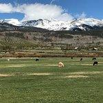 Foto de Devil's Thumb Ranch Resort & Spa