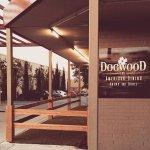 The Dogwood Yard.