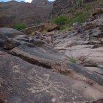 Heirogliphic Trail