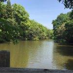 Photo of Sakatagaike Comprehensive Park