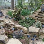 Photo of Durham University Botanic Garden