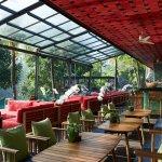 Jungle Fish pool bar