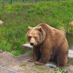 Er wartet wohl auf Besucher. :-)