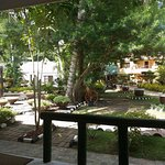 Dumaluan Beach Resort Image