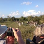 Foto di Arathusa Safari Lodge