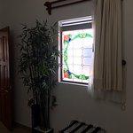 Plantas de plastico y ventanas cerradas sin ventilacion