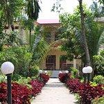Jungle Resort Sauraha