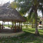 Dolphin Resort Image