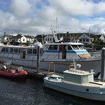 We are aboard the Glacier Spirit ready to see whales and whatever else is out in Puget Sound and