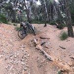 Foto de Terra BikeTours - Private Day Tours