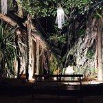 Nuga Gama at Cinnamon Grand Colombo Foto