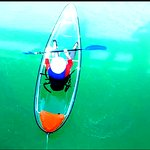 Check out all the marine life Florida has to offer in a Glass Bottom Kayak!