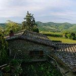 Fattoria Castelvecchi Foto