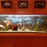 Photo de Hotel GHT Aquarium & SPA