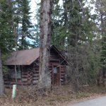 We just returned from a perfect time at the west entrance, Apgar campground !   What a perfect t