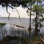 Photo de Historic Blakeley State Park