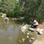 Photo of Los Angeles County Arboretum & Botanic Garden