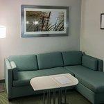 Sleeper Sofa in Separate Sitting Area