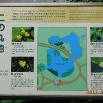 Photo of Ninomaru Garden